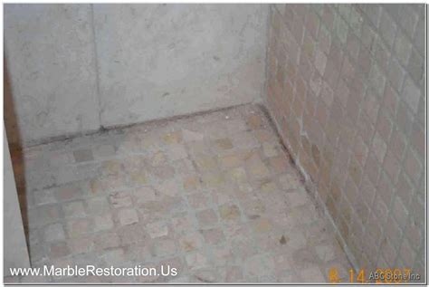 Tiles Floor Black Mold   Gallery