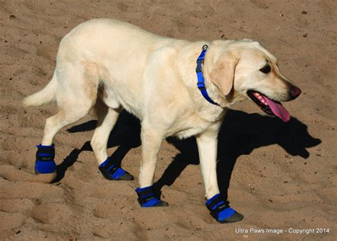 Ultra Paws Cool Dog Boots