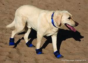 ultra paws cool dog boots With how to make dog shoes