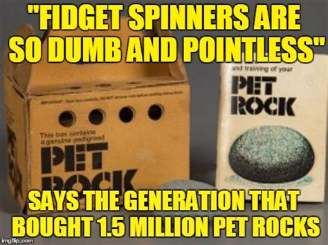 Pet Rock Meme - has anyone found bad luck brian s pet rock the one that