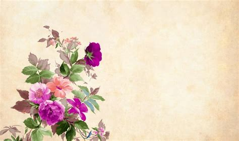 get html color from image get free stock photos of flower background