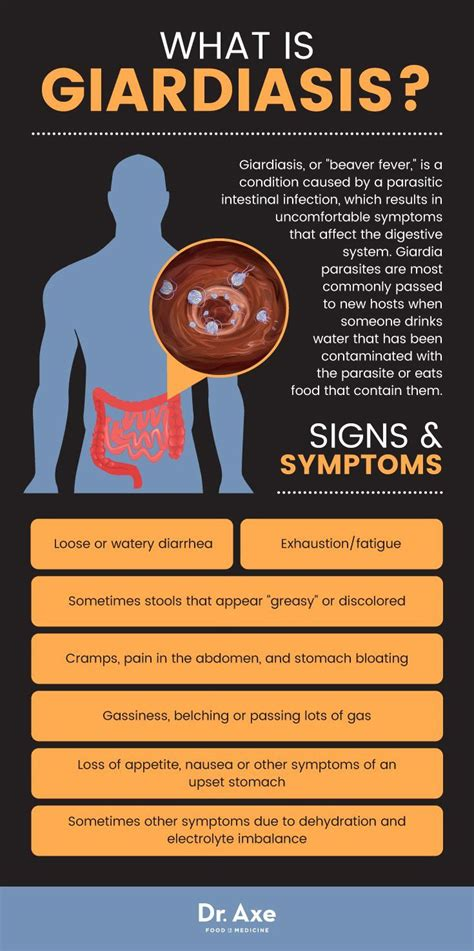 Giardia Parasite Symptoms