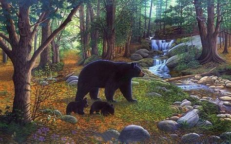 forest bears waterfalls creek wallpapers forest bears