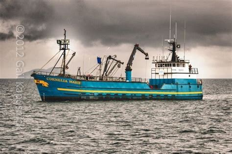 15 best images about deadliest catch on pinterest