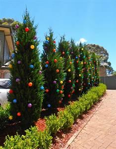 Giggleberry, Creations, Decorating, Our, Outdoor, U0026, 39, Christmas, Trees, U0026, 39