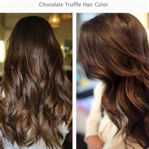 truffle color 1000 ideas about chocolate hair colors on
