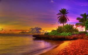3d abstract widewallpaper tropical beach 38492 tropical ...