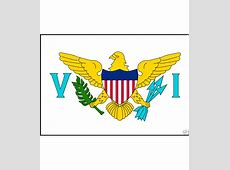 US Virgin Islands Courtesy Flag 12x18 in