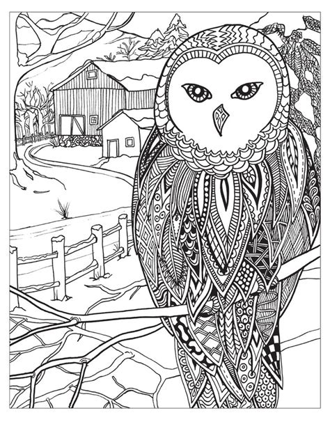 images  oe adult colouringowlsbirds zentangles oe  pinterest