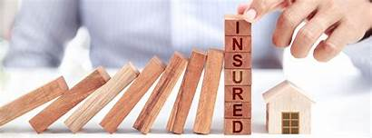 Insurance Yes Property Should Management Landlord Auckland