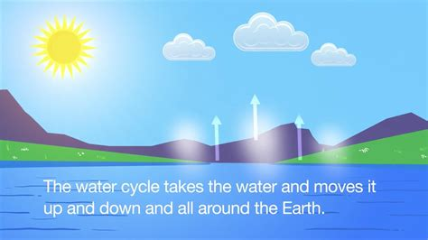 Water Cycle Song (animated)