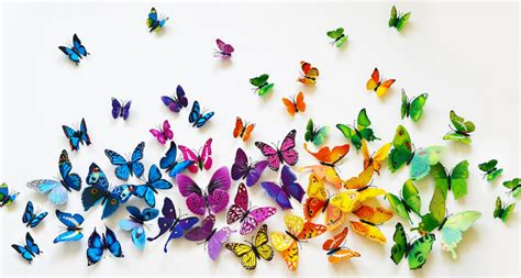 3d butterfly wall decor 6 99 was 24 99