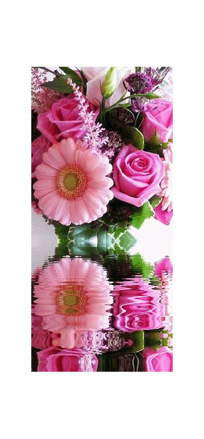 Flowers Flores Flower Rosas Roses Animated Rose