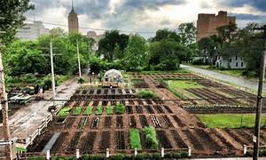 Urban Gardening Definition : twelve organizations promoting urban agriculture around the world food tank ~ Eleganceandgraceweddings.com Haus und Dekorationen