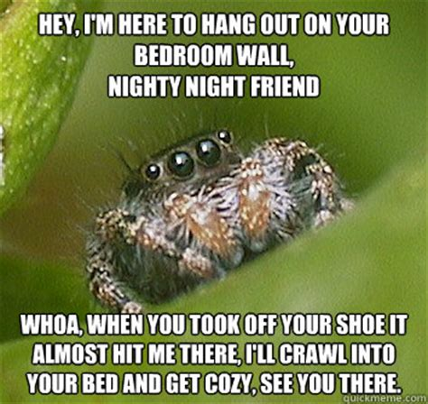 Nighty Night Meme - hey i m here to hang out on your bedroom wall nighty night friend whoa when you took off your