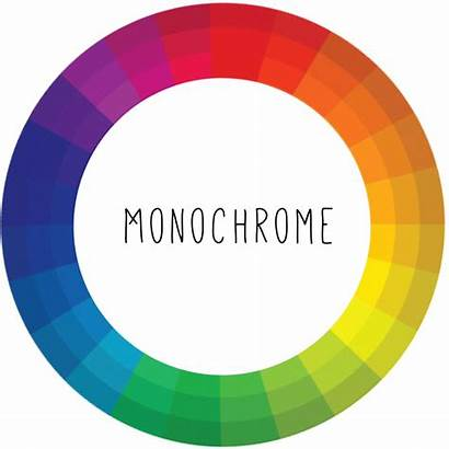 Theory Introduction Photographers Monochrome Colors Medium While