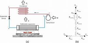 A  Main Components And  B  Thermal Resistance Network Of