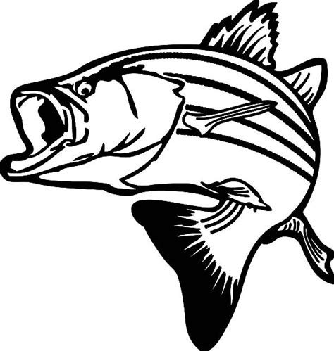 How To Draw A Bass Boat Step By Step by Bass Fish Line Drawing