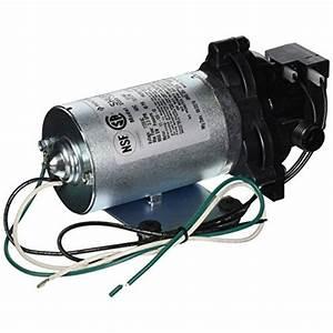 Shurflo Industrial Pump  2in  Model