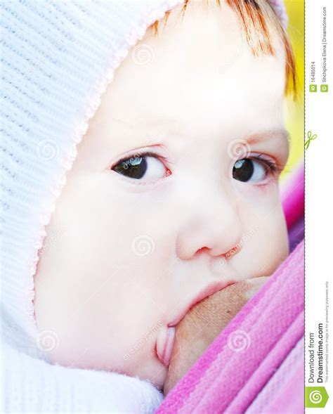 Breastfeeding Stock Images Image 16485014