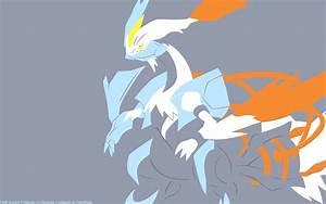 #646 Kyurem (White)   PokéWalls