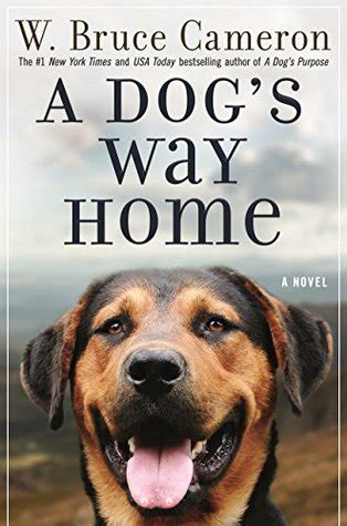 dogs  home   bruce cameron reviews discussion