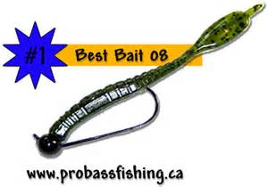 Best Bass Fishing Bait