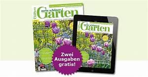 Mein Schöner Garten Zeitschrift Abo : 2 ausgaben der zeitschrift mein sch ner garten gratis ~ Lizthompson.info Haus und Dekorationen