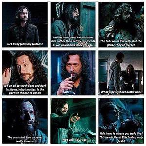 Sirius Black mo... Sirius Azkaban Quotes