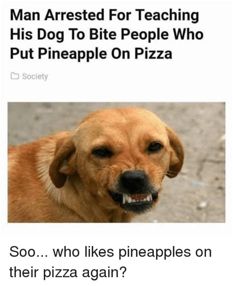 Dog Bite Meme - man arrested for teaching his dog to bite people who put pineapple on pizza society soo who