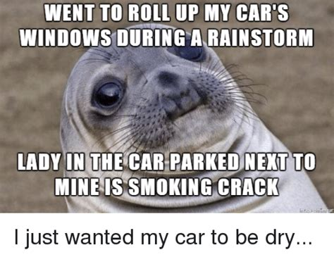 Roll Up Meme - went to roll up my car s windows during a rainstorm lady in the car parked next to mineis