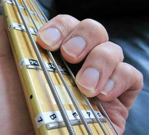 Bass Guitar Fretboard Scale Labels Stickers