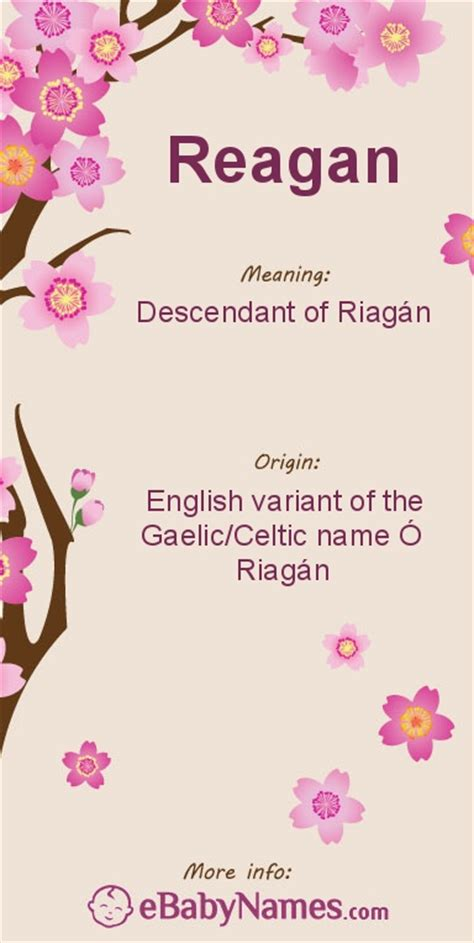 meaning  reagan reagan   english variant   gaelicceltic surname  riagan meaning
