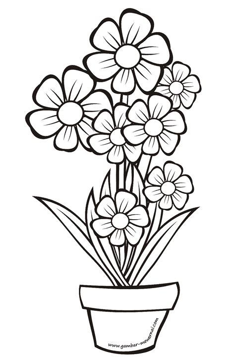 contoh gambar mewarnai bunga didalam pot