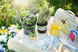 Que Planter En Juin : quelles fleurs planter au mois de juin guide astuces ~ Melissatoandfro.com Idées de Décoration