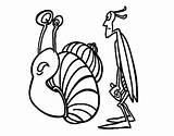 Cricket Snail Coloring Coloringcrew sketch template