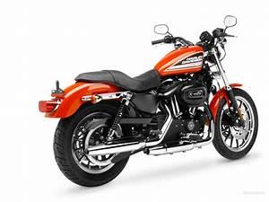 Harley Davidson Sportster Xl 883 1200 Service Manual 2007