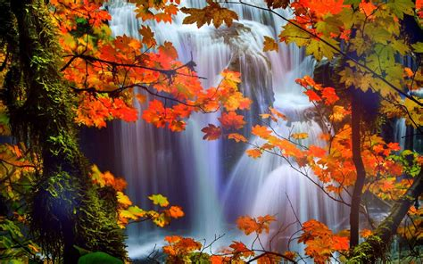 Beautiful Nature Fall Desktop Backgrounds by Image For Beautiful Waterfalls With Flowers Wallpaper