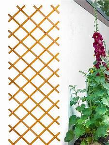 Rankhilfe Für Kletterrosen : rankgitter rankhilfe rosengitter scherengitter spalier ~ Michelbontemps.com Haus und Dekorationen