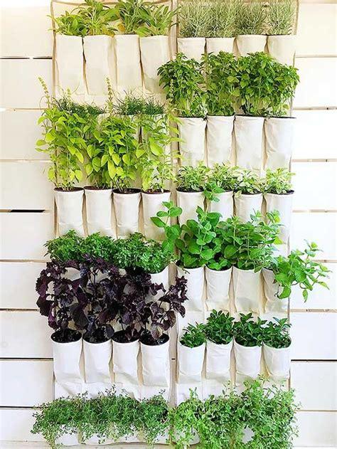 diy vertical gardens   herbs backyard diy