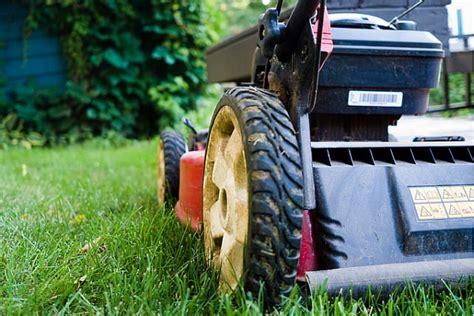Ieteikumi, kā izvēlēties piemērotāko mauriņa pļaujmašīnu