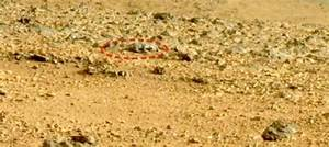 Mars Rat? Photo of Rat-Like Image Found By Mars Curiosity ...