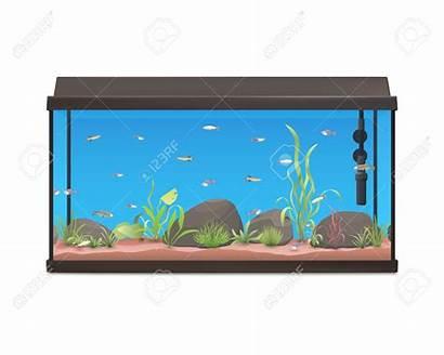 Fish Tank Aquarium Clipart Fishtank Turtle Clip