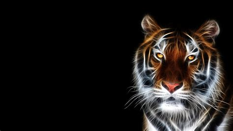 Animals 3d Wallpapers For Desktop - 3d animal hd wallpapers free