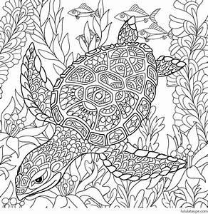 Jeux Anti Stress : coloriage antistress une tortue marine lulu la taupe ~ Melissatoandfro.com Idées de Décoration