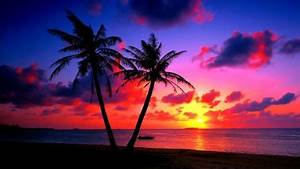Tropical parad... Tropical Beach Paradise Sunset ...