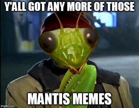Mantis Meme - imgflip can t get enough of these imgflip