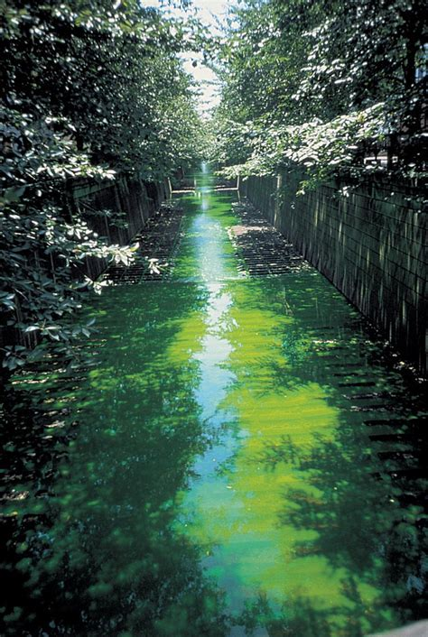 Green river ? Artwork ? Studio Olafur Eliasson