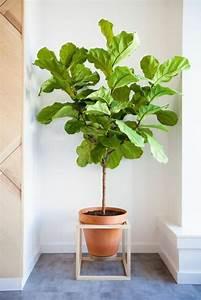 Pot Pour Arbre : 40 pots de fleurs qui vont allumer votre imagination ~ Dallasstarsshop.com Idées de Décoration