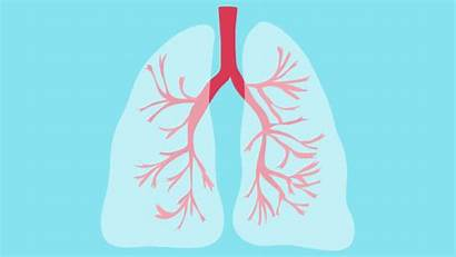 Lung Cancer Copd Symptoms Treatment Asthma Cell
